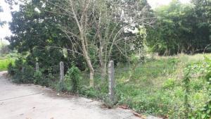 ขายที่ดินแถวตำบลบ้านพระ ปราจีนบุรี 2.2 ไร่ราคาถูก